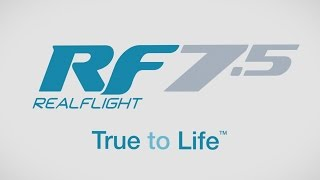 RealFlight RF7.5 R/C Flight Simulator