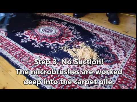 Host Dry Extraction Carpet Cleaning - Green Owl Services