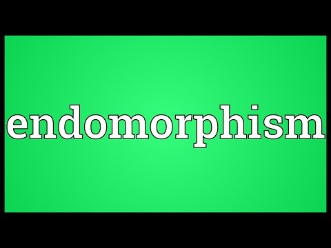 Header of endomorphism