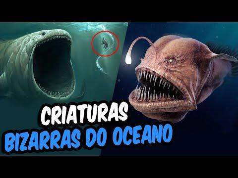 Top 10 Criaturas Bizarras Encontradas No Fundo Do Oceano