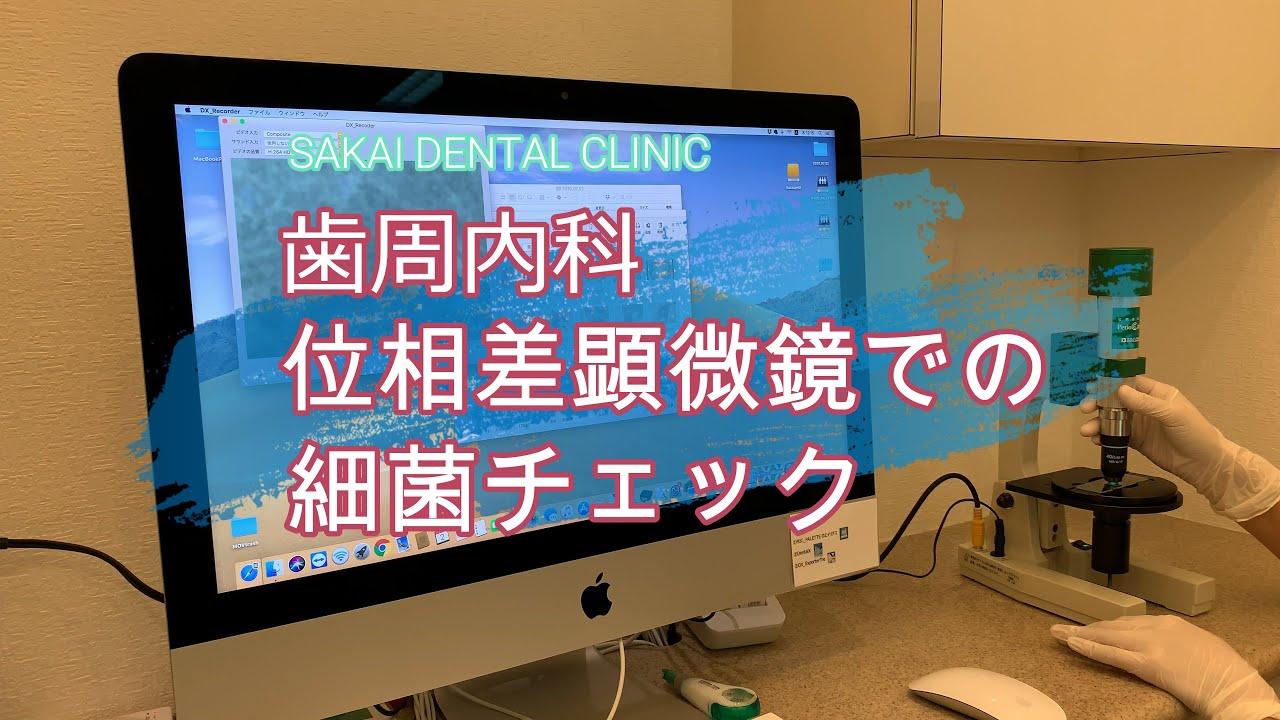 いわき市 歯周病