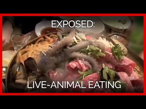 Live-Animal Eating Exposed