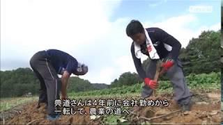 KBS京都テレビ 「あぐり京都」 JA京都  ごぼ丹 藤原さん(京丹後市) 2017年10月放送