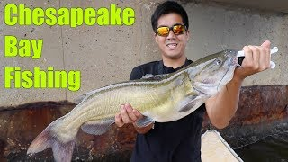 MULTI-SPECIES Fishing Challenge in BRACKISH Water!!! (My Dad Catches the Biggest Fish of His Life)