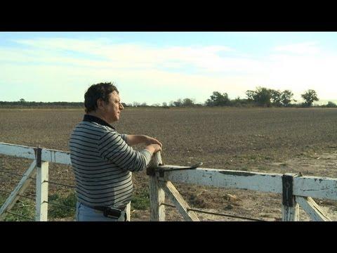 Soy: Argentina's dangerous savior