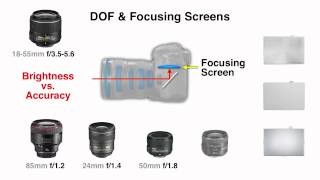 Depth of Field and Focusing Screens Explained by John Greengo