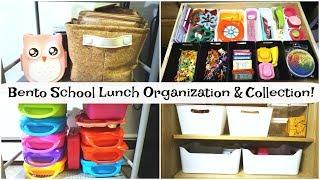 Bento Lunch Accessories & Organizaton