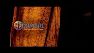 Ximbal - szkoła waldorfska w Meksyku