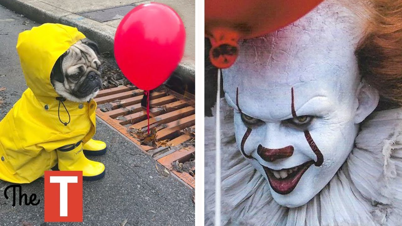 20 epic pet costume ideas for halloween pennywise from it movie wonder woman