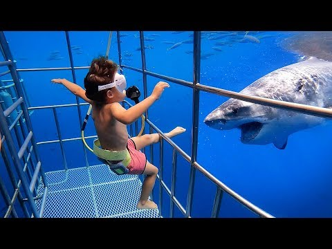 5 YR OLD Scuba Dives With GREAT WHITE SHARKS In Mexico!!