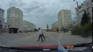 Собаку переводят через дорогу за лапу