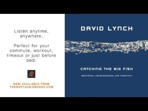 Catching The Big Fish Meditation, Consciousness, And Creativity