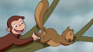 Georges le Petit Singe 🐵La Cabane 🐵Saison 2  🐵Dessin Animé 🐵Animation Pour Enfants