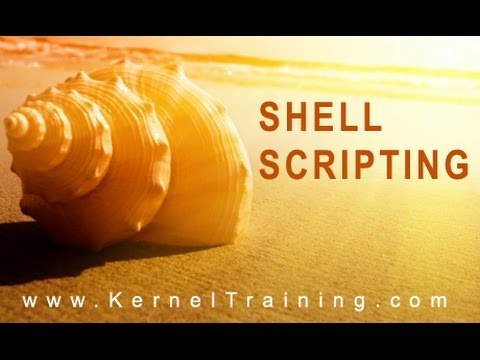 Shell Scripting – Fundamentals Part 02 |  Tutorial for Beginners