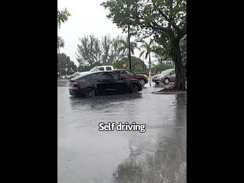 Tesla driving itself out of a flooded area