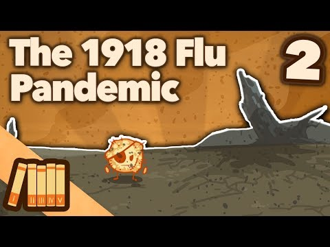 1918 Flu Pandemic - Trench Fever - Extra History - #2