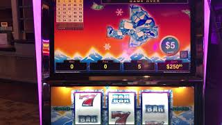 """LIVE HANDPAY"" VGT Polar High Roller Max Bet  Make Sense & Anchor Bingo Patterns  Choctaw Casino"