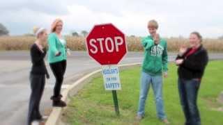 Shenandoah High School Celebrate My Drive 2013 Music Video