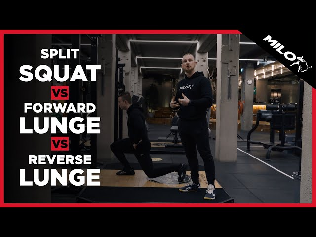 Split Squat vs. Forward Lunge vs. Reverse Lunge