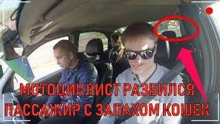 ПАССАЖИР с запахом КОШЕК |Яндекс такси | разбился МОТОЦИКЛИСТ