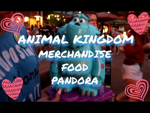 ANIMAL KINGDOM MERCHANDISE ,FOOD ,AND PANDORA!
