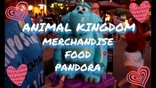 ANIMAL KINGDOM MERCHANDISE ,FOOD ,AND PANDORA!