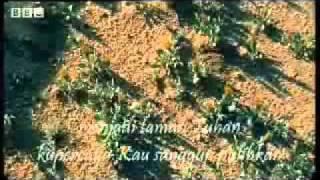 Padang Gurun Menjadi Taman Tuhan Klip