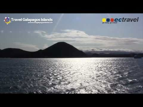 The Galapagos Islands, a journey of life and adventure