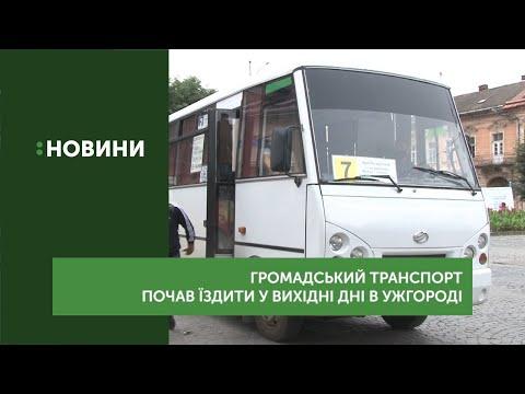 Громадський транспорт почав їздити у вихідні дні в Ужгороді
