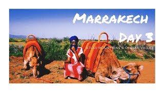 Morocco Vlog - Marrakech Day 3 | Atlas Mountains, Camel Riding, Ourika Valley & Argan Oil