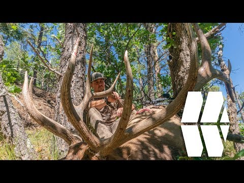 HUGE ARCHERY ELK IN NEW MEXICO - MWO S1E14