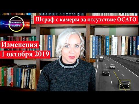 Штраф с камеры за отсутствие ОСАГО | Изменения с 1 октября 2019| 116 Блондинка вправе