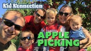 Fall Fun -- Apple Picking -- Pony Rides -- Farm Animals