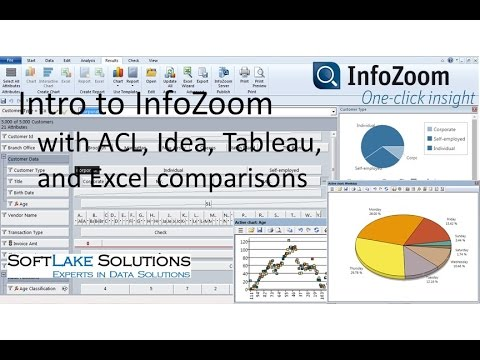 Intro to InfoZoom  ACL Idea Tableau Comparison