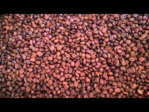 Colombia Excelso Fresh Roasted Coffee Bean Description