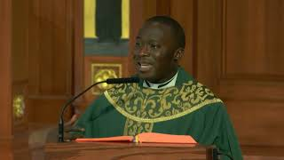 Fr. Lawrence Onyegu's Homily for the 27th Sunday in Ordinary Time