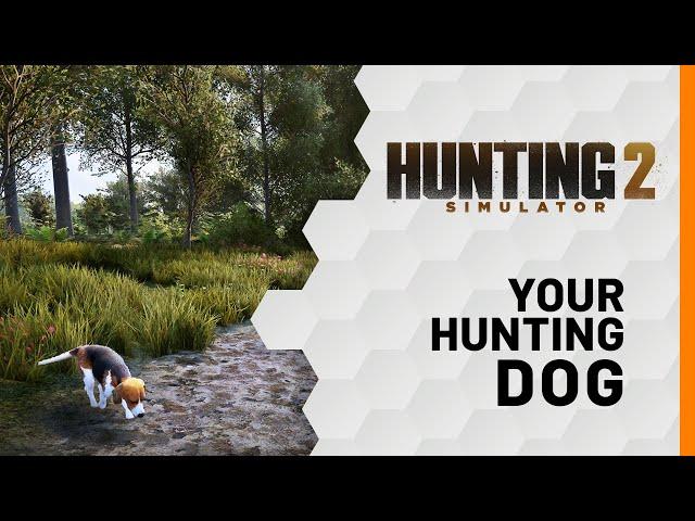 Hunting Simulator 2 (видео)