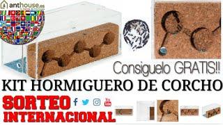HORMIGUERO DE CORCHO GRATIS | Sorteo Internacional participa y gana GRATIS con Anthouse.es