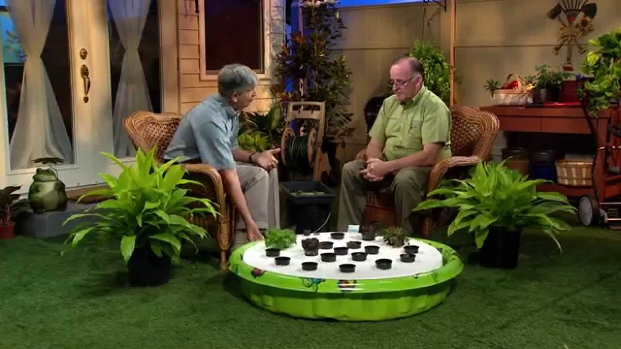 Central Florida Gardening Wading Pool Hydroponics Youtube