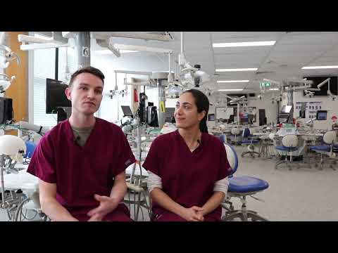 What's It Like Studying The Doctor Of Dental Medicine (DMD)?