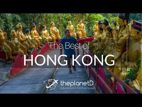 The Very Best Things to do in Hong Kong, China | Travel Vlog