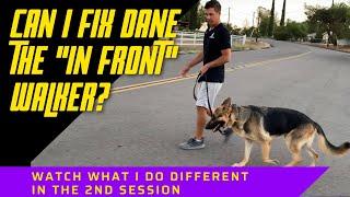 Dane the 'In front' walker's 2nd walk, does he get better?