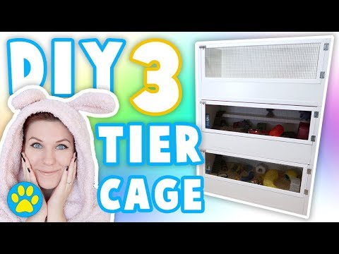 Building A Triple Level Rodent Cage | The Test Tube | Vlog