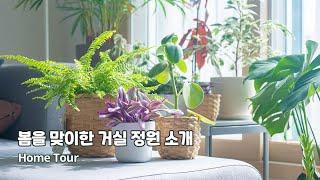 봄을 맞이한 우리집 거실 식물정원을 소개합니다  202…