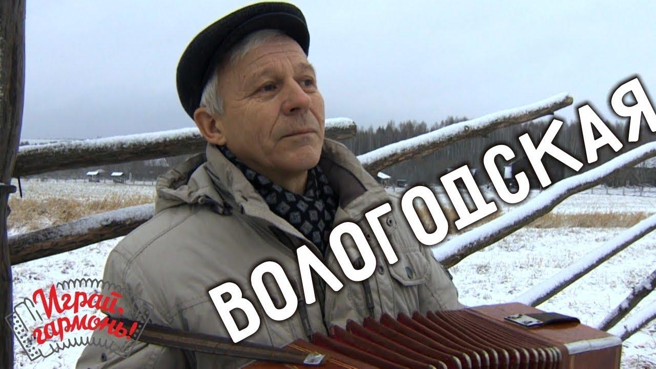 Играй, гармонь! | Николай Филин (Вологодская область) | Наигрыши