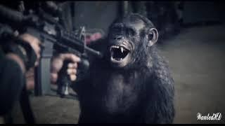 فيلم الاكشن القتال القرود