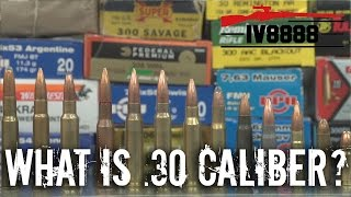 Firearms Facts: .30 Caliber Explained