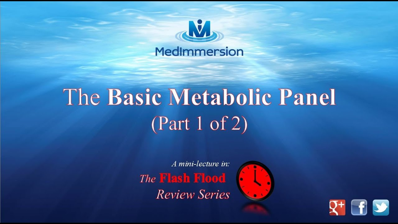 The Basic Metabolic Panel The Bmp Part 1 Of 2 Youtube