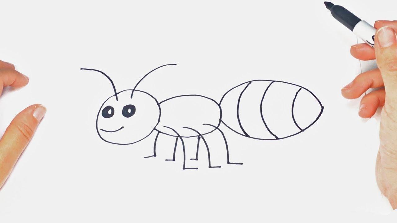 Cómo Dibujar Un Insecto Para Niños Dibujo De Insecto Paso A Paso