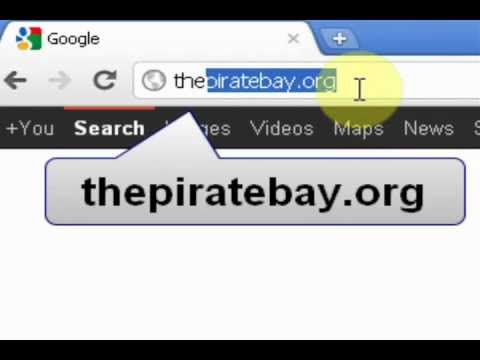 m thepiratebay org torrent